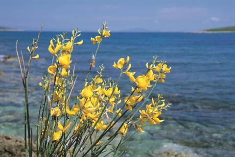 Heerlijke vakantie DalmatiÃ« 🏝️Hotel Miramare