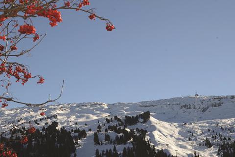 TOP DEAL skivakantie Le Grand Massif ⛷️Résidence Les Gémeaux