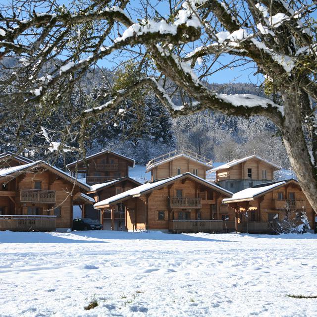 Les Chalets du Bois de Champelle - extra ingekocht