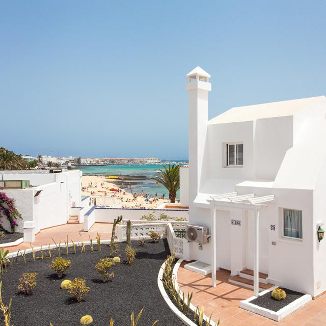 Appartementen TAO Caleta Playa - winterzon
