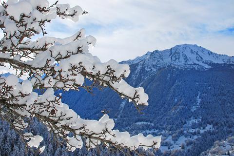 Korting skivakantie Les Quatre Vallées ⛷️Chalet CNY01
