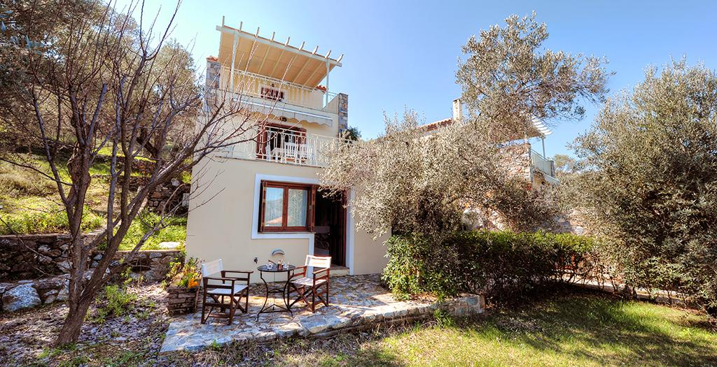 Gera's Olive Grove