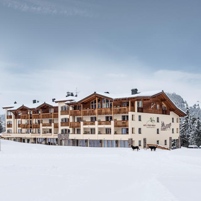 Hotel Steger - Dellai