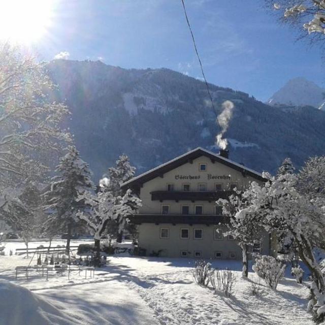 Mayrhofen - Appartementen Rosenhof